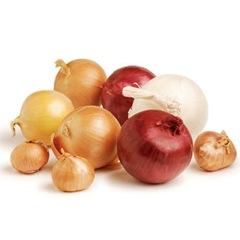 ING-onions_sql